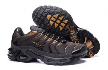 Acheter Chaussures Nike Air Max TN Plus Homme Grise Or